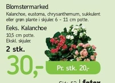 Blomstermarked 2 stk.