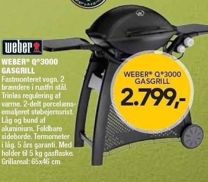 Weber Q 3000 Gasgrill